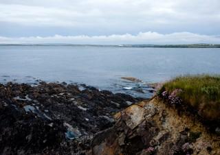 Ireland – Doonbeg beach with flowers