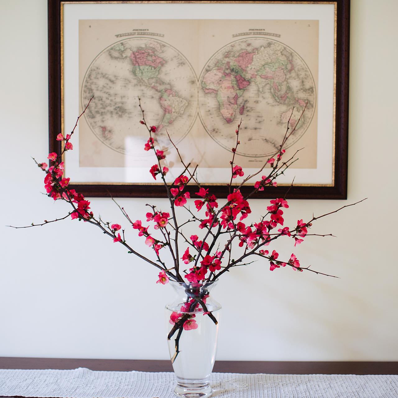 fiori e mappa