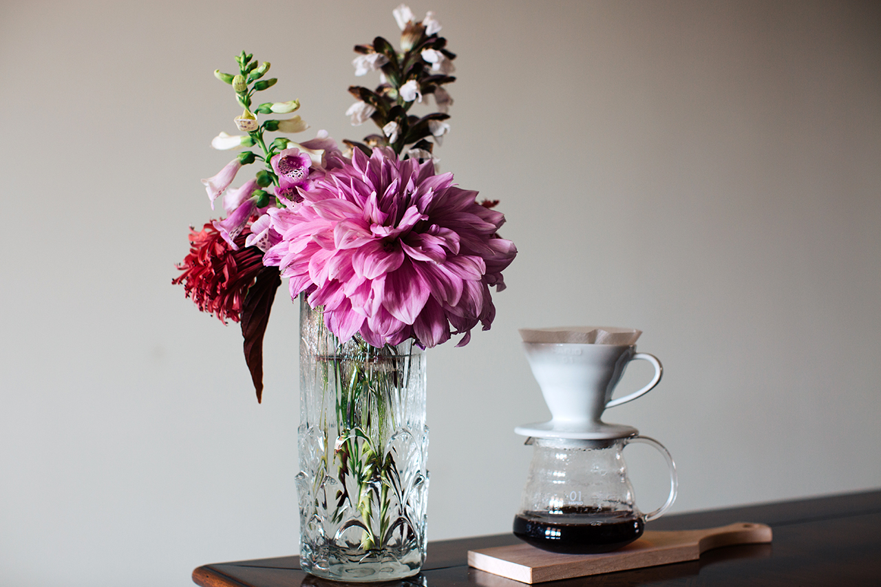 Dahlia and V60 coffee