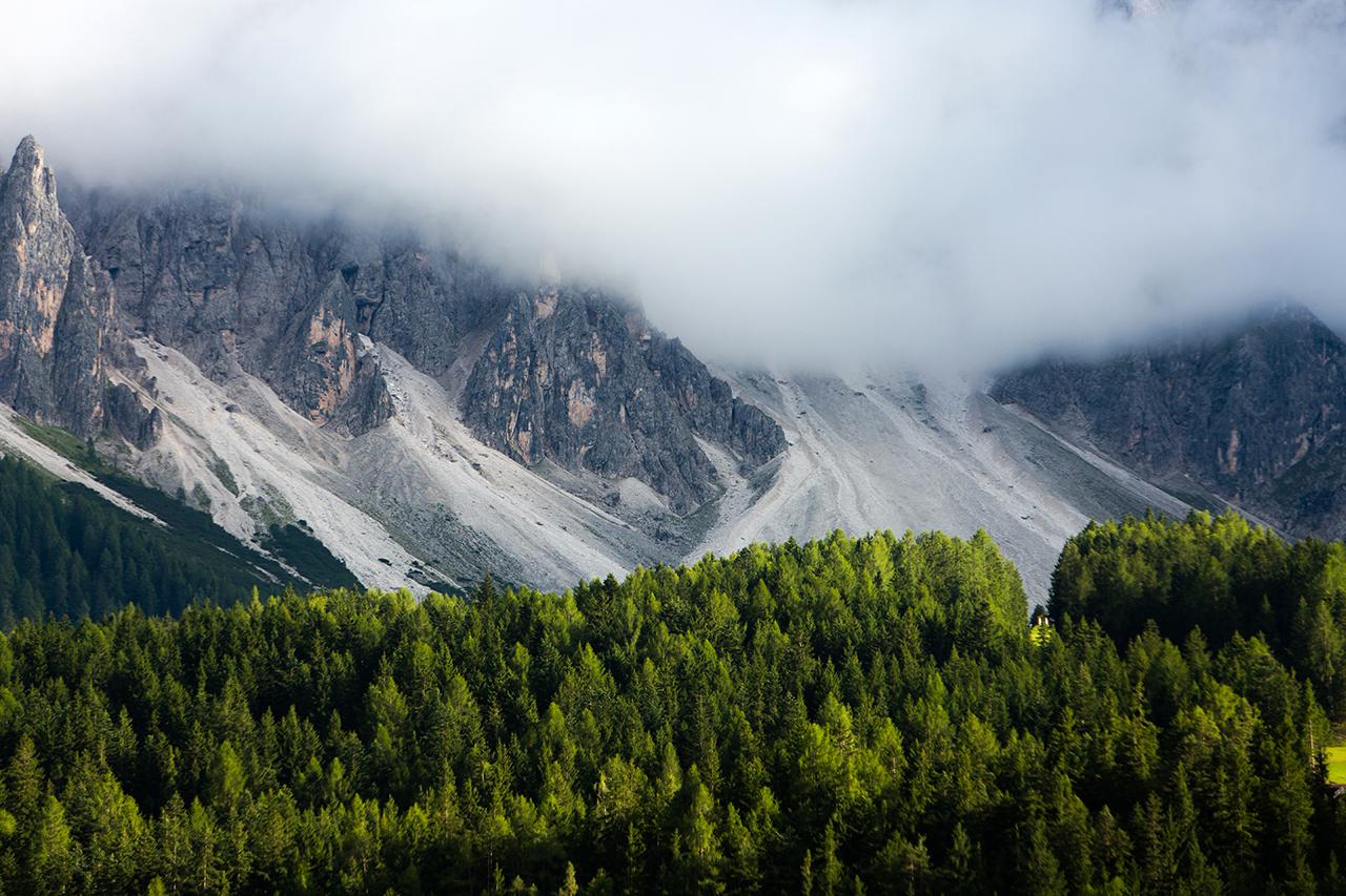 val pusteria trees fog