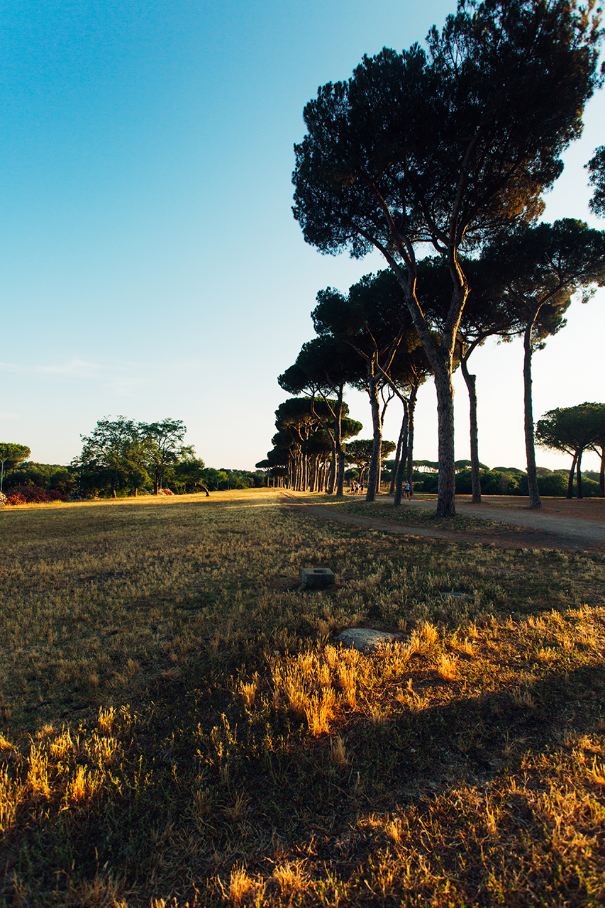 villa pamphili sunrise