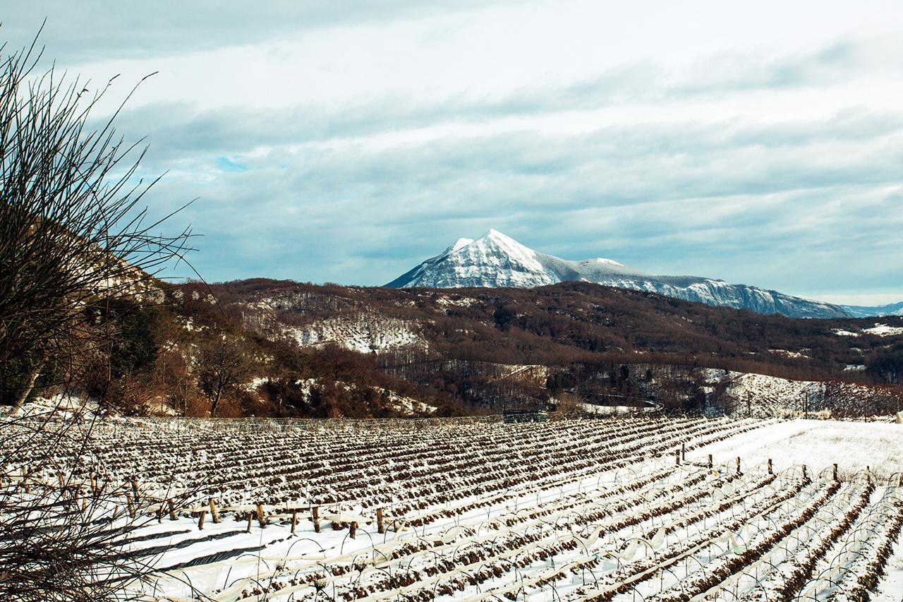Sirino - Snowy Fields