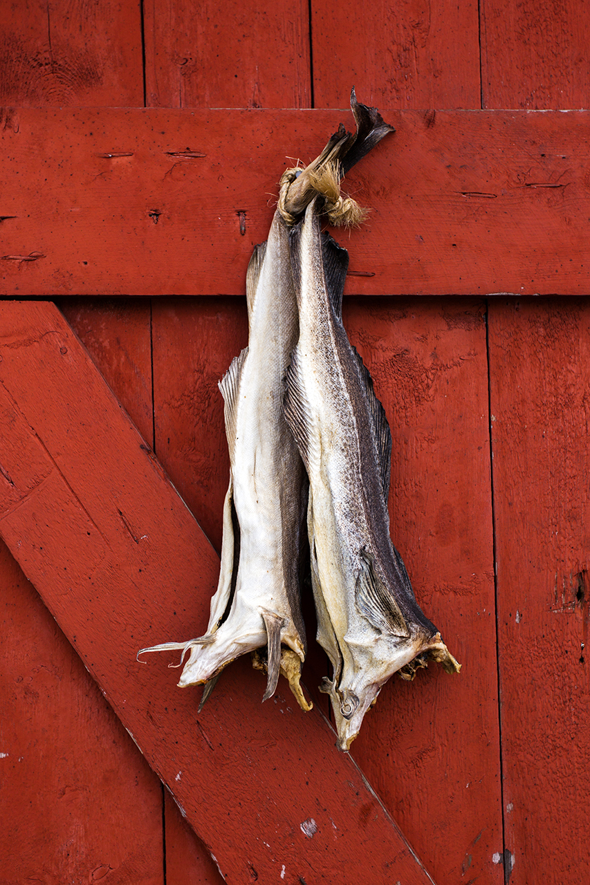 lofoten stockfish door