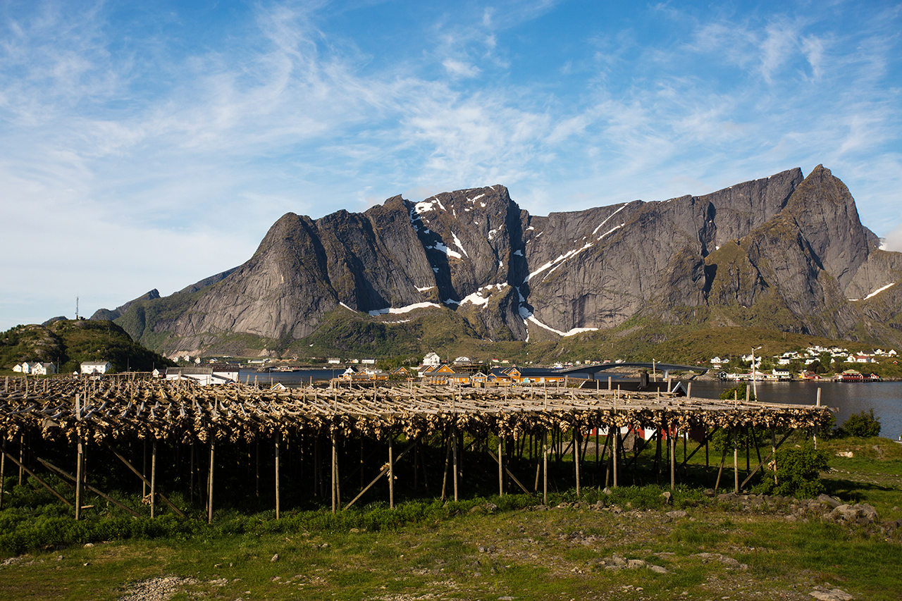 Lofoten Landscape with cod stockfish