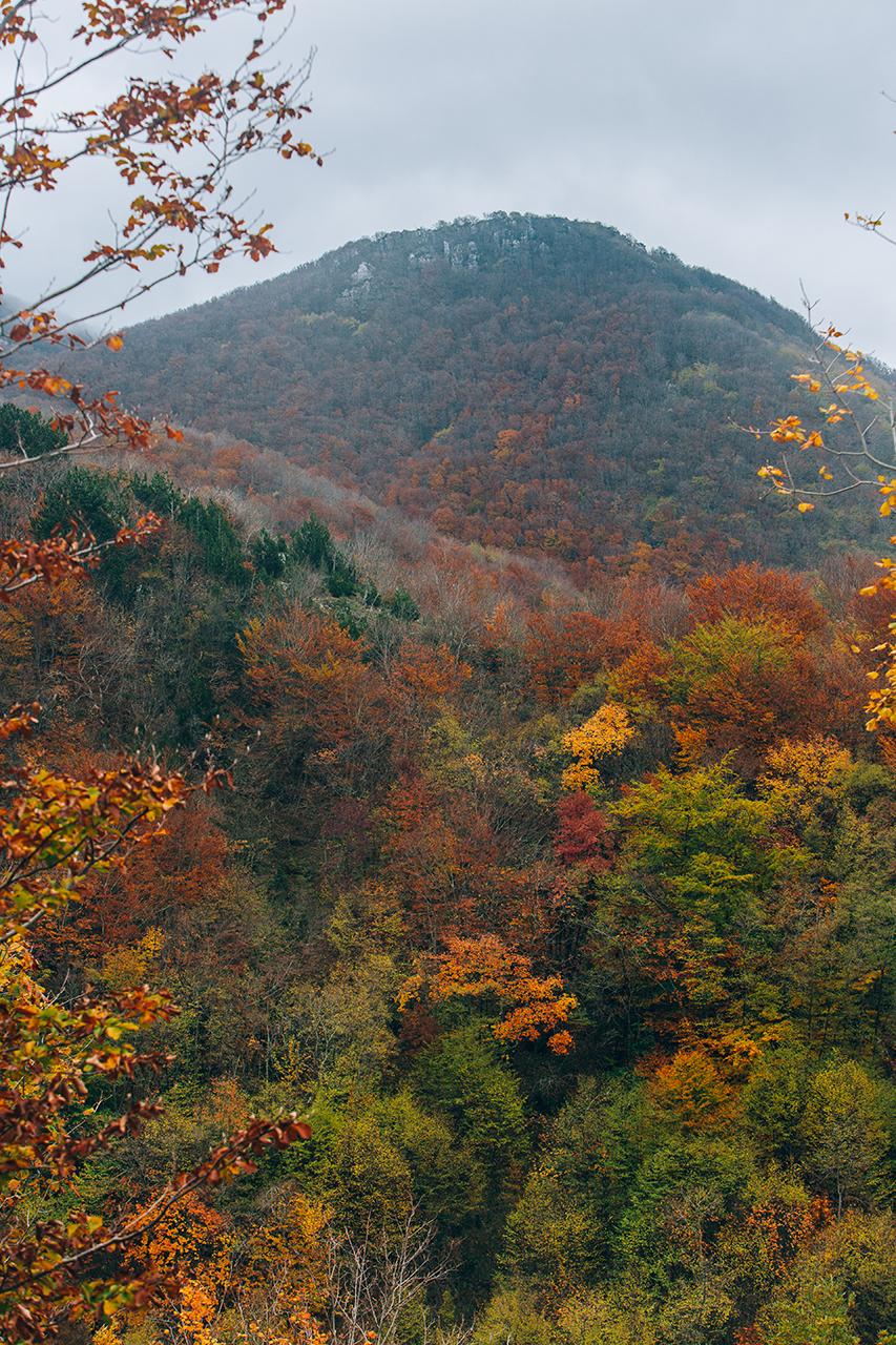 monte capillo castelluccio autunno