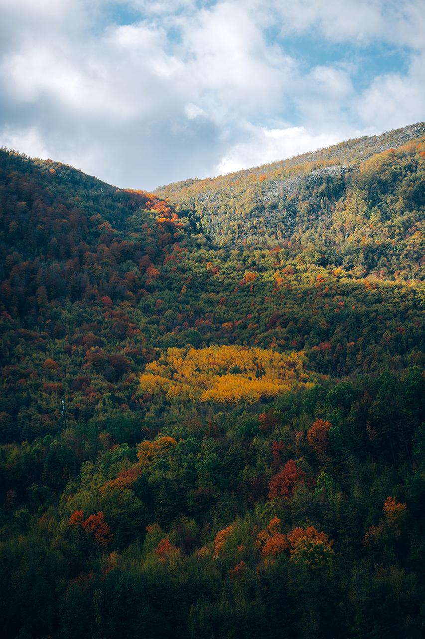 castelluccio boschi