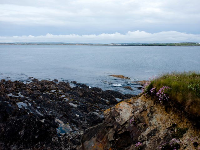 Ireland – Doonbeg beach with flowers