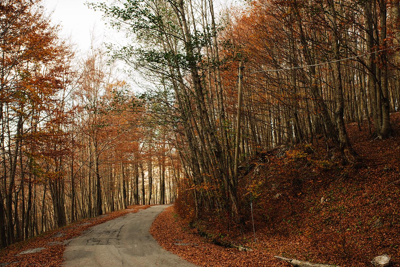 sirino strada autunno