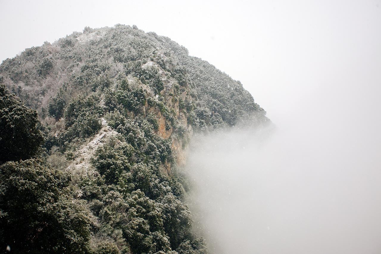 lauria neve nebbia